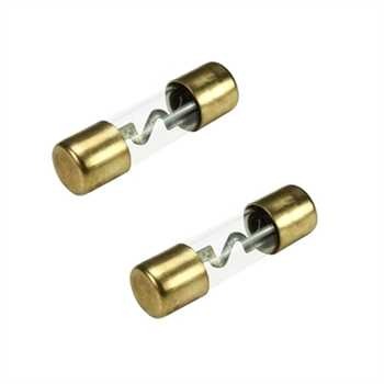 AGU Glas-Sicherung 20A, 2 Stück, vergoldet